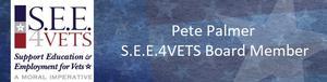 P2 Consulting Service, LLC